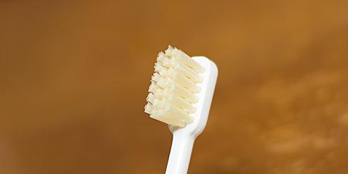 かなや刷子:豚毛の歯ブラシ