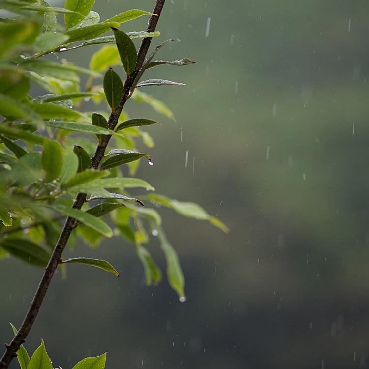 1時間に120ミリの豪雨な長崎